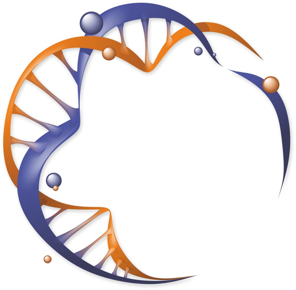Illustrations eines kreisförmig angeordneten DNA-Strangs